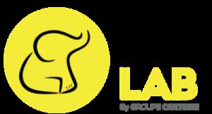 LOGO-BIG-DATA-LAB-GROUPE-CARTEGIE-300x161